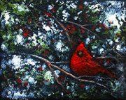 Winter cardinal 2